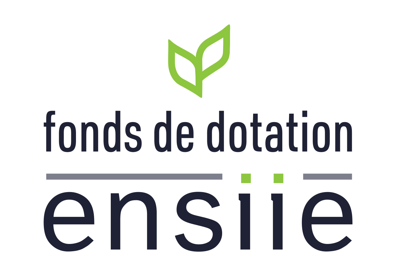 Logo FONDS DE DOTATION